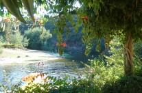 Een koele duik…Zwemmen in een Praia Fluvial.Het best bewaarde geheim van Portugal. Een duik in een stromende rivier omgeven door natuurschoon en op de mooiste, rustige plekjes. Elk met zijn eigen charme maar allemaal even bijzonder. Met strandjes, terras, sanitair, barbecue en picknicplaatsen. De dichtstbijzijnde is op twee kilometer afstand. Maar er zijn er 50 te vinden in de omgeving.