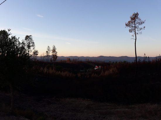 Uitzicht op vale avond