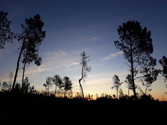 Vale de garcia zonsopkomst