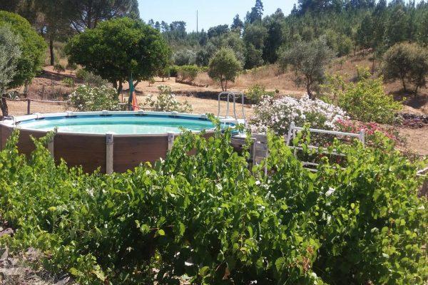Casa Velha zwembad 1